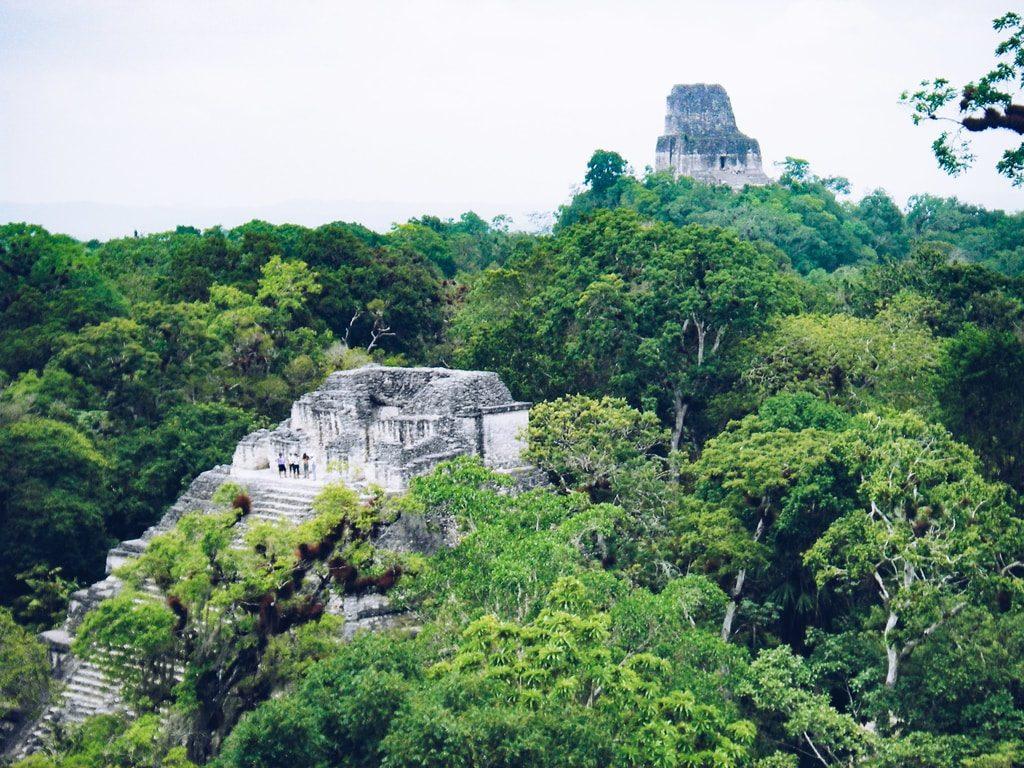 Vue sur Tikal - Guatemala
