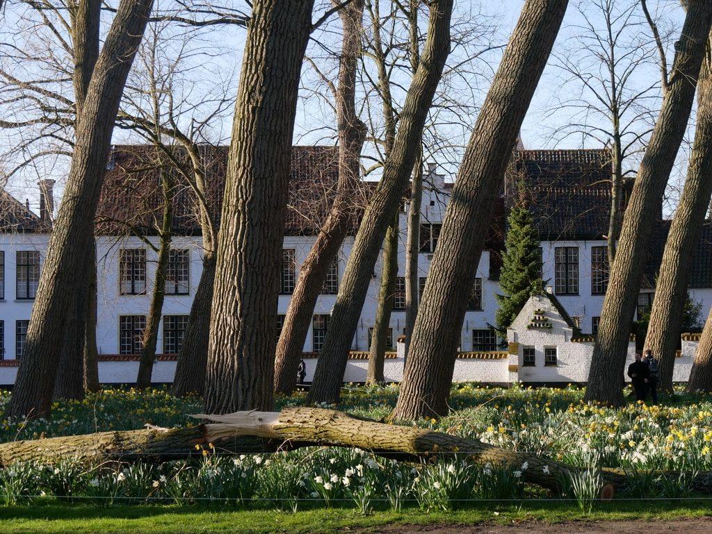 Belgique - Le Béguinage de Bruges