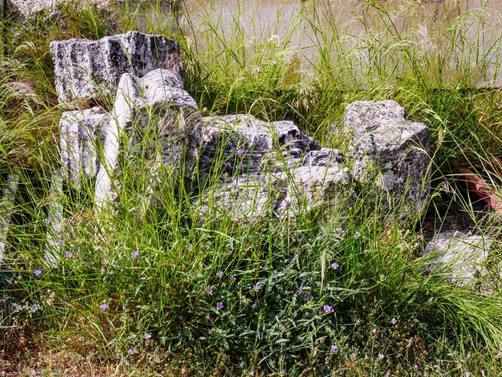 Colonnes -Épidaure