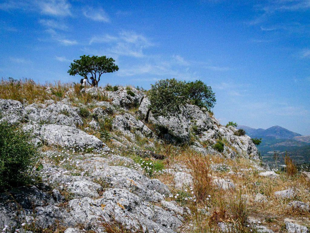 Hauteurs de Mycènes - Grèce