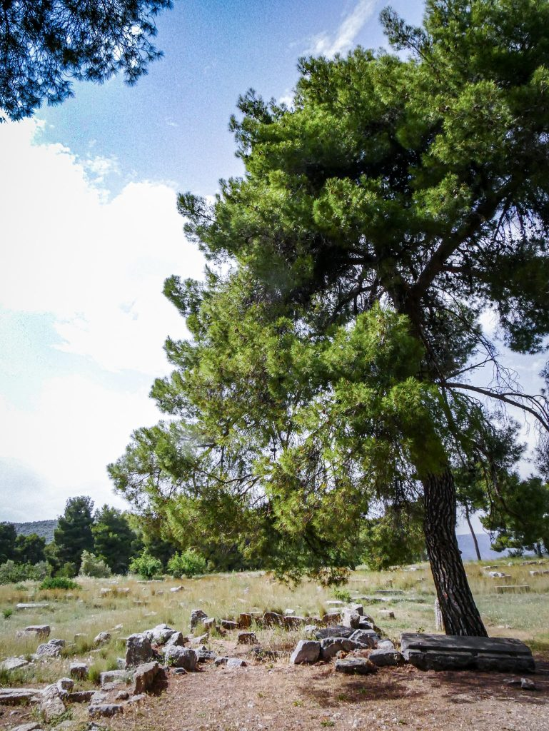 Sanctuaire d'Asclépios - Épidaure