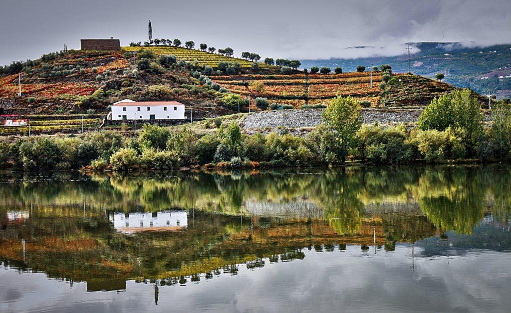 Excursions depuis Porto - Vallée du Douro © Wikimedia Commons