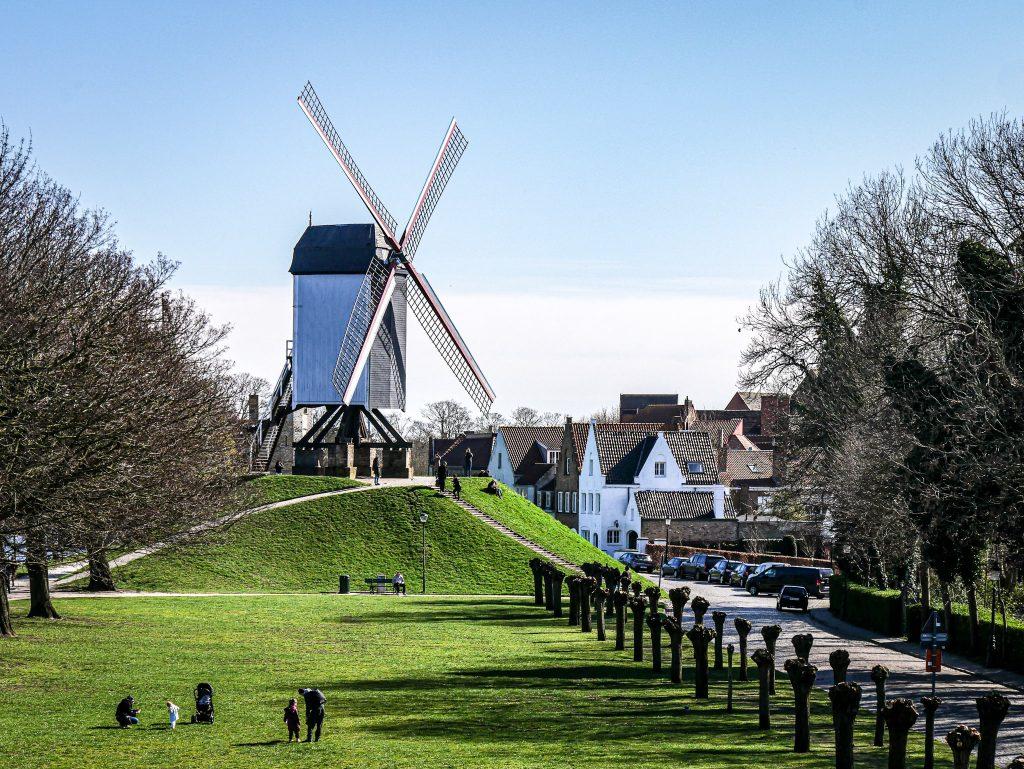 Que faire à Bruges - moulins à vent