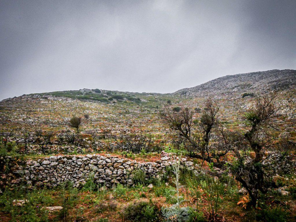 Le Magne - Péloponnèse - paysage