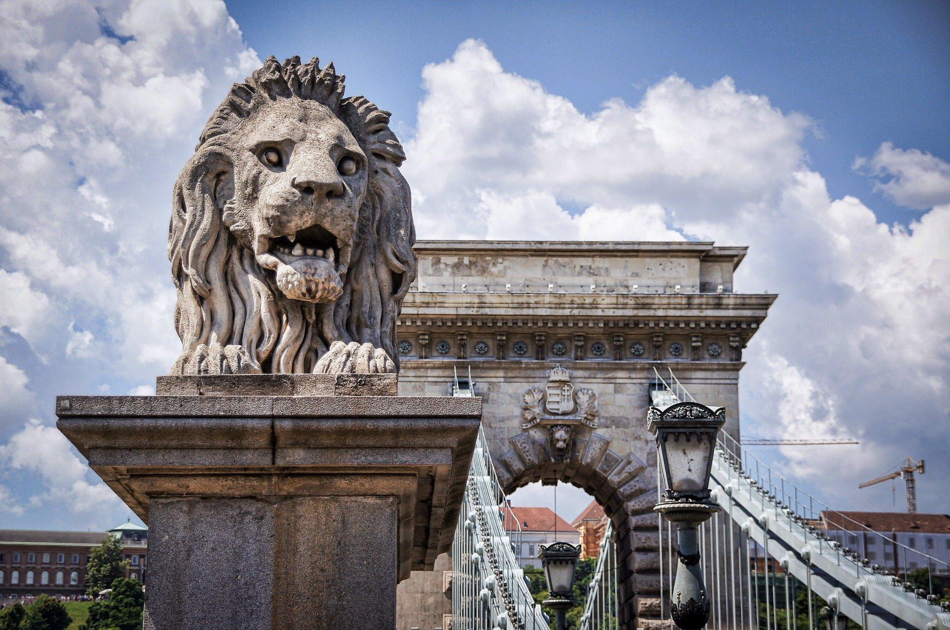 Lion statue - Széchenyi Chain Bridge - Budapest