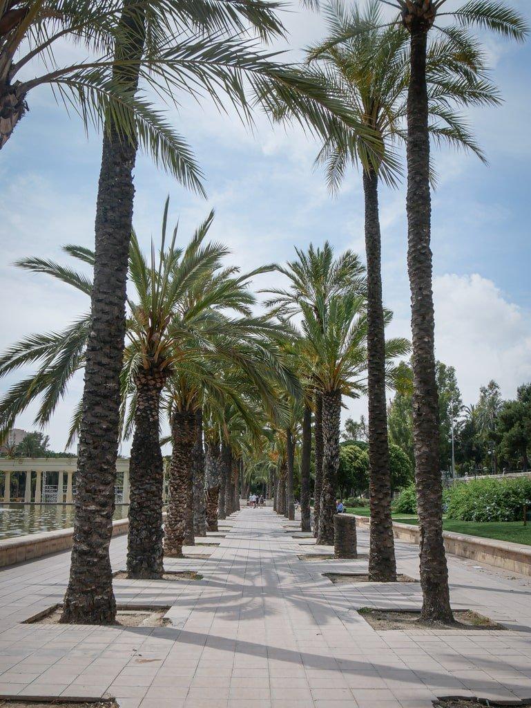 Jardins du Tùria - Valence - promenade