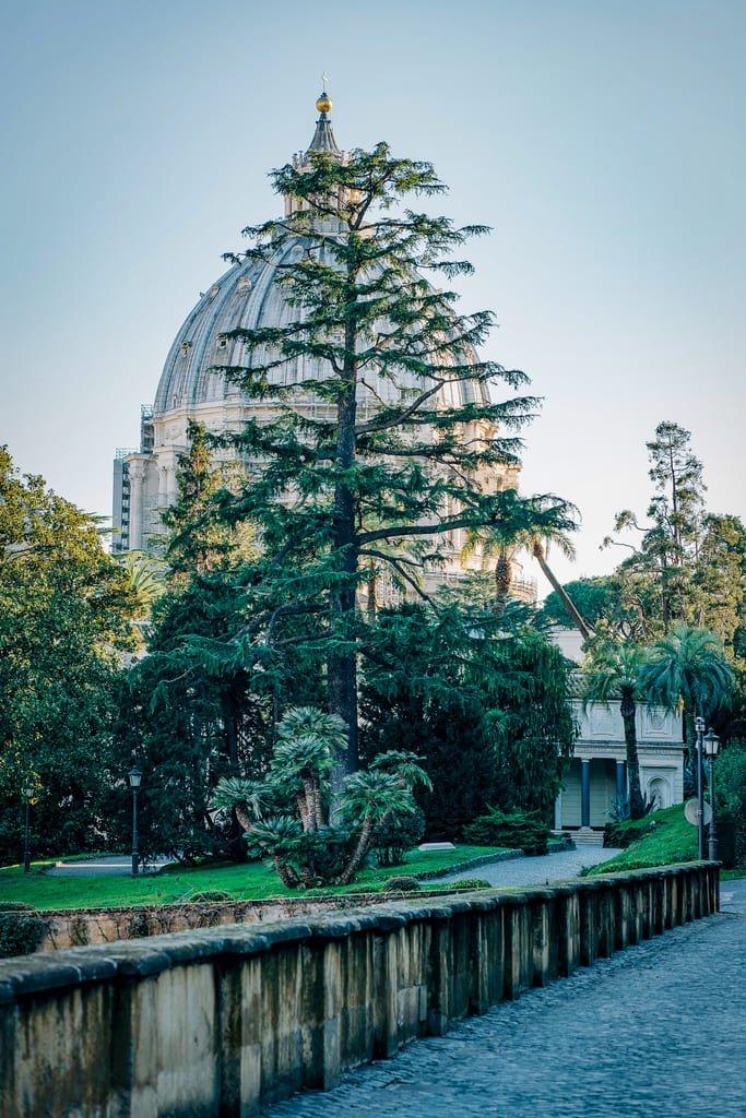 Saint-Pierre vue depuis les Jardins du Vatican